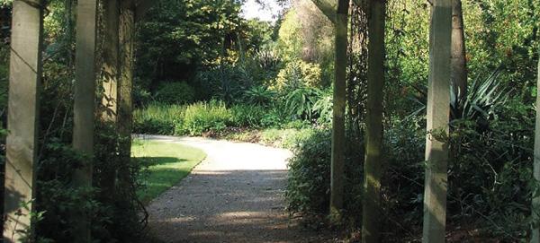 American garden Mount Edgcumbe Cornwall