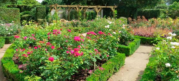 Cornish Gardens