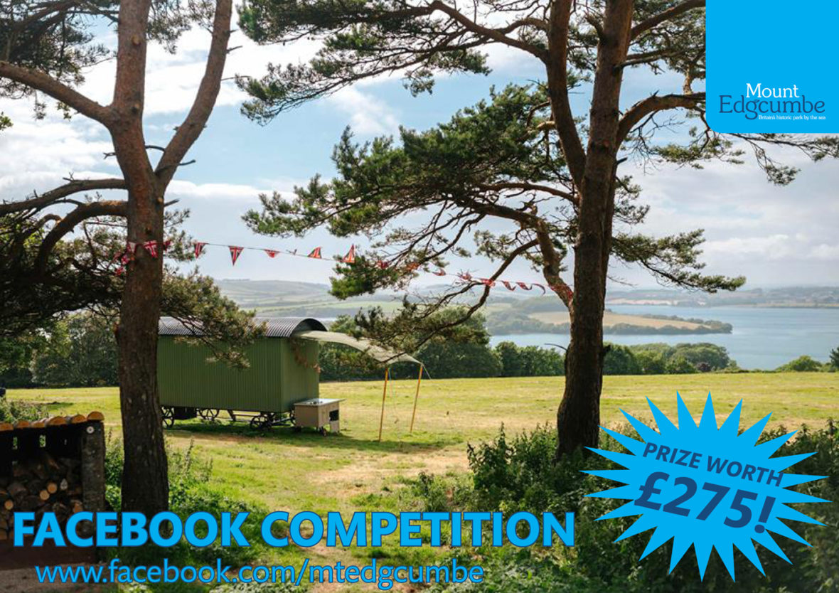 Luxury glamping in Cornwall